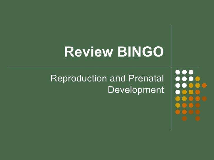 Review BINGO Reproduction and Prenatal Development