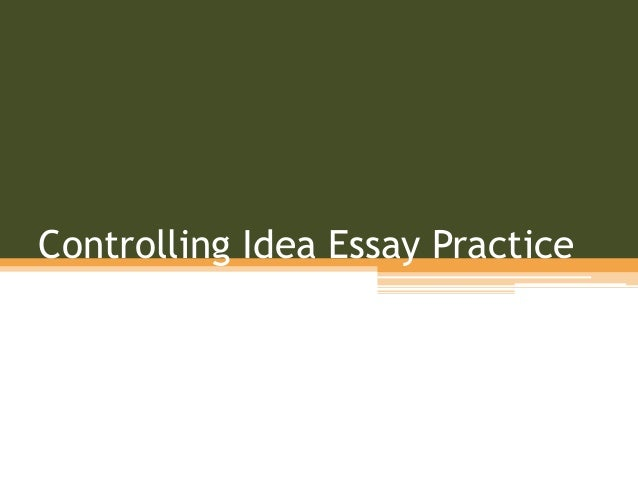 Essay Idea