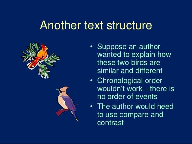 the birds compare and contrast Bats vs birds bats and birds are winged animals difference between bats and birds the variation between bats and birds is their structure and class.