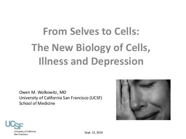 the biology of depression essay Depression is a complex disease webmd explains what research has discovered about the causes of depression how is biology related to depression.