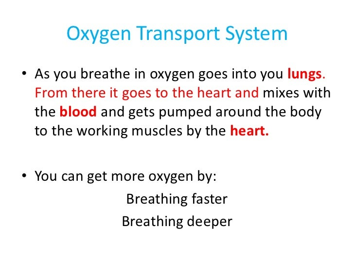 Oxygen Transport System• As you breathe in oxygen goes into you lungs.  From there it goes to the heart and mixes with  th...
