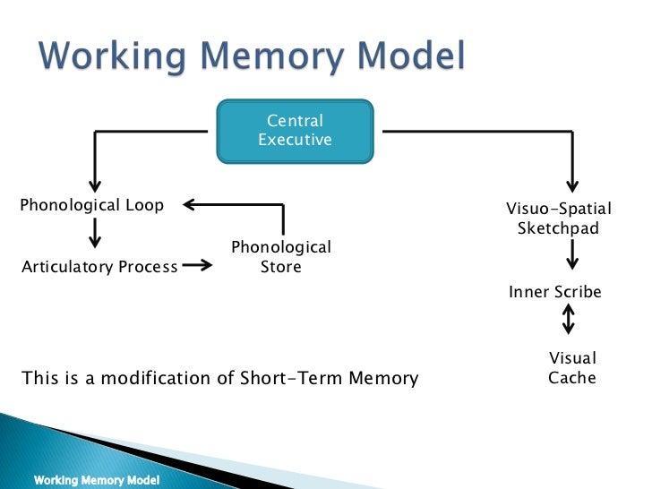 psychology memory. Black Bedroom Furniture Sets. Home Design Ideas