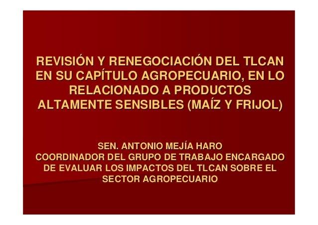 Revisión y renegociación del Tlcan en su capítulo agropecuario, en lo relacionado a productos altamente sensibles (maíz y frijol)