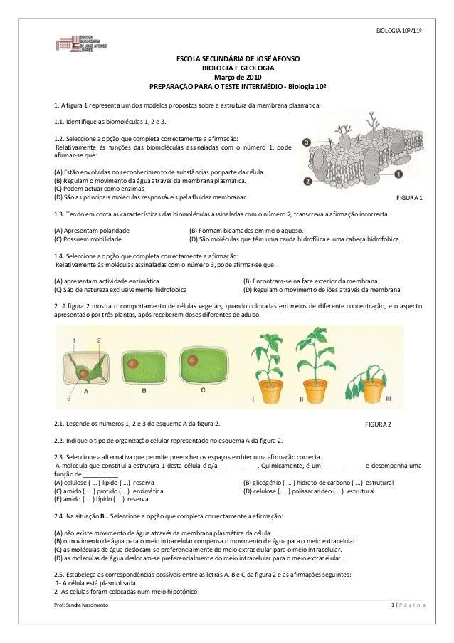 BIOLOGIA10º/11º Prof:SandraNascimento  1 P á g i n a  ESCOLASECUNDÁRIADEJOSÉAFONSO BIOLOGIAEGEOLOGIA Mar...