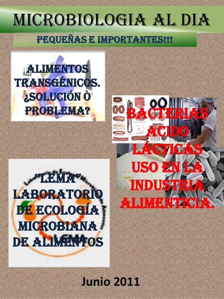 MICROBIOLOGIA AL DIA   PEQUEÑAS E IMPORTANTES!!!  AlimentosTransgénicos. ¿Solución ò Problema?         Bacterias          ...