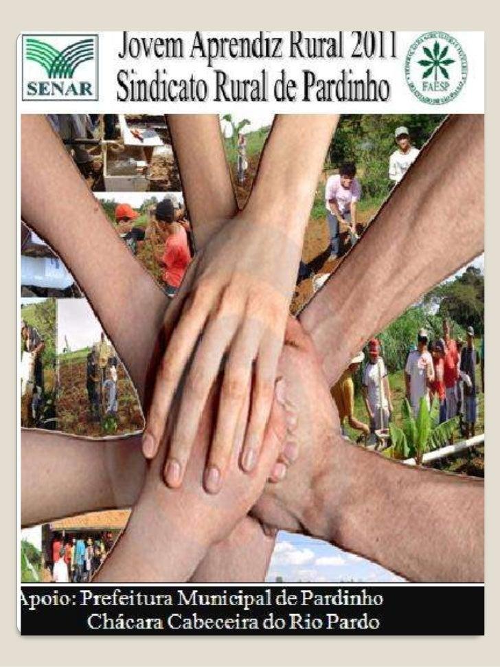 Revista Jovem Aprendiz Rural 2011