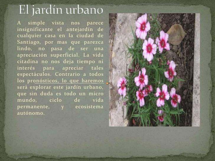 Revista el jard n urbano for El jardin urbano