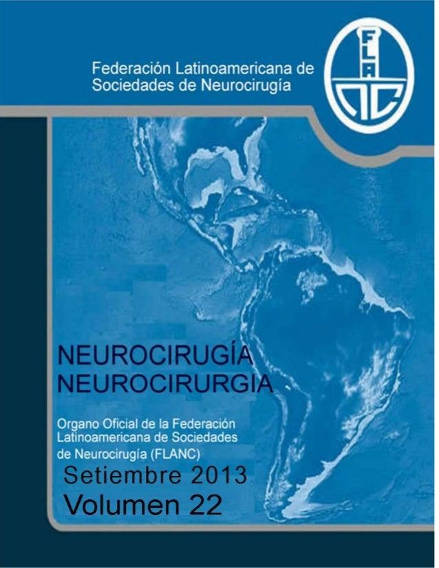 Neurocirugía Setiembre 2013 (Vol 22)