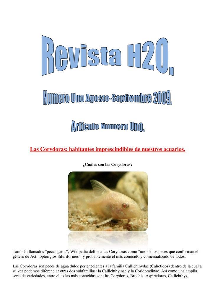 Revista H2 O Numero Uno.