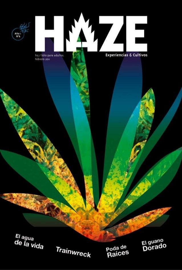 Revista haze 6
