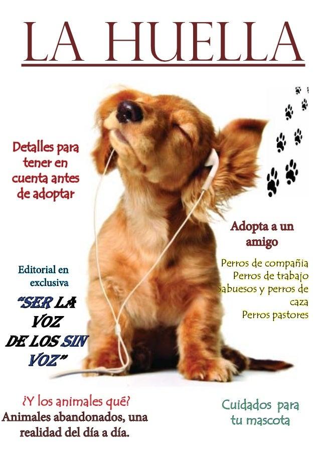 Revista la huella!total