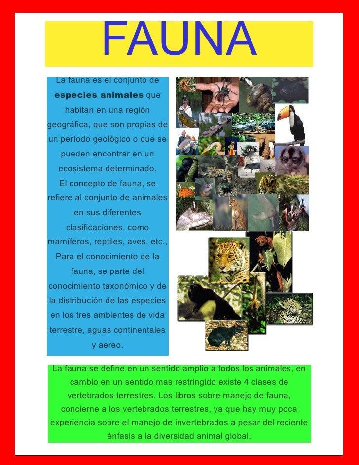 Revista sobre la fauna