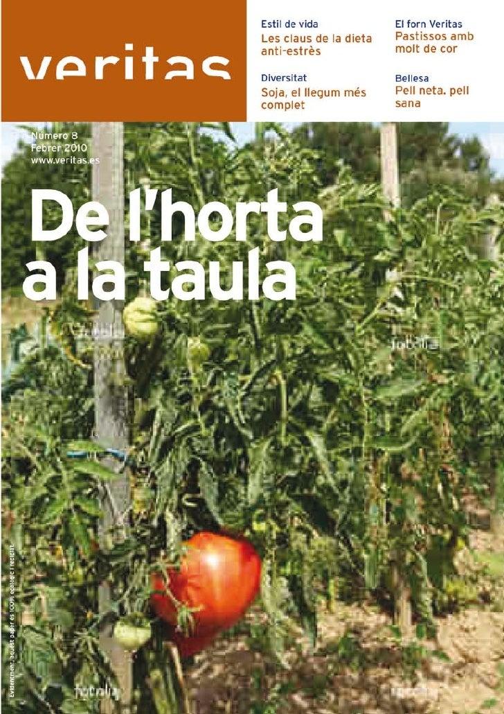 Revista veritas 08