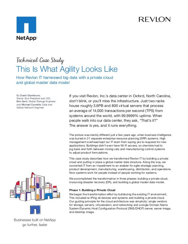 Technical Case StudyThis Is What Agility Looks LikeHow Revlon IT harnessed big data with a private cloudandglobalmaster ...