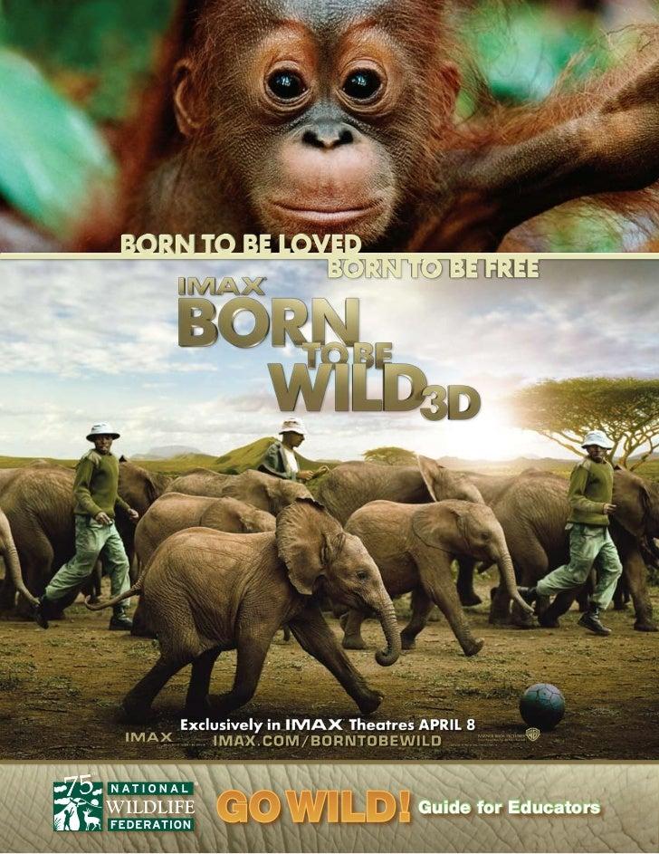 Born to Be Wild 3D Teacher Guide