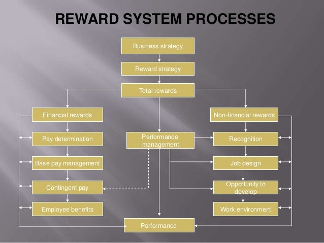 strategic reward systems a contingency