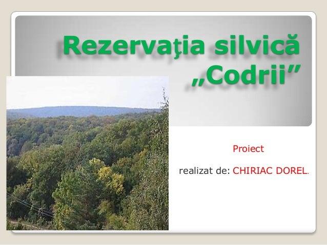 Rezervatia codrii
