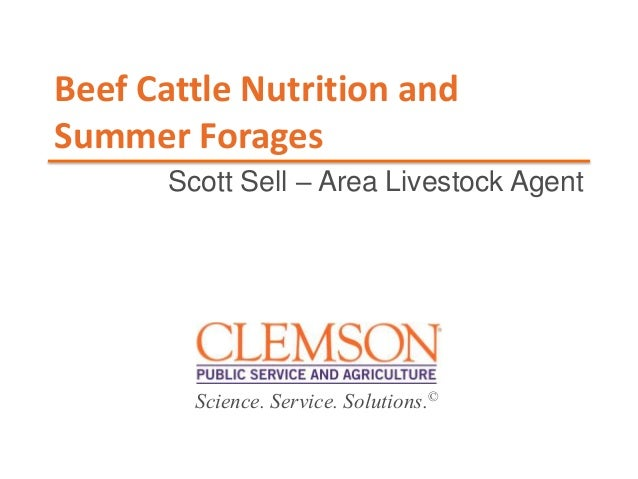 Science. Service. Solutions.© Beef Cattle Nutrition and Summer Forages Scott Sell – Area Livestock Agent