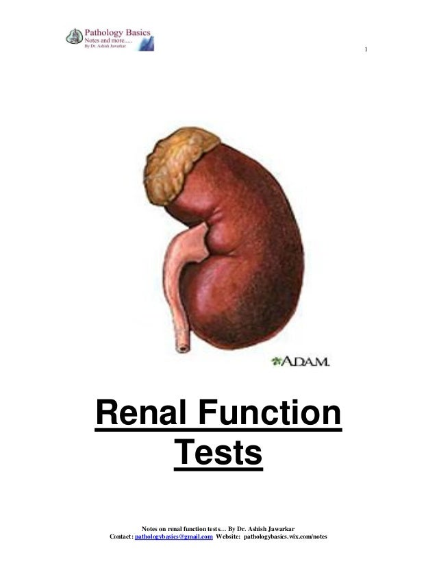 1  Renal Function Tests Notes on renal function tests… By Dr. Ashish Jawarkar Contact: pathologybasics@gmail.com Website: ...