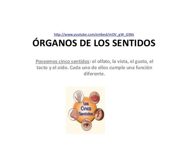http://www.youtube.com/embed/mOV_gW_GlMsÓRGANOS DE LOS SENTIDOSPoseemos cinco sentidos: el olfato, la vista, el gusto, elt...
