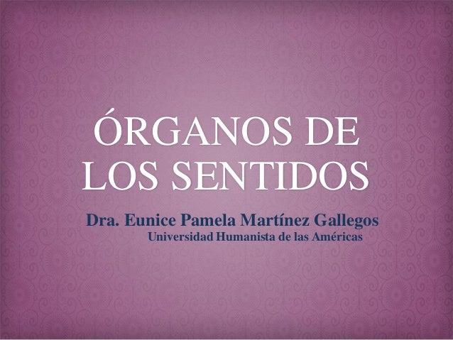 ÓRGANOS DE LOS SENTIDOS Dra. Eunice Pamela Martínez Gallegos Universidad Humanista de las Américas
