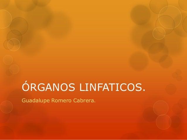 ÓRGANOS LINFATICOS.Guadalupe Romero Cabrera.