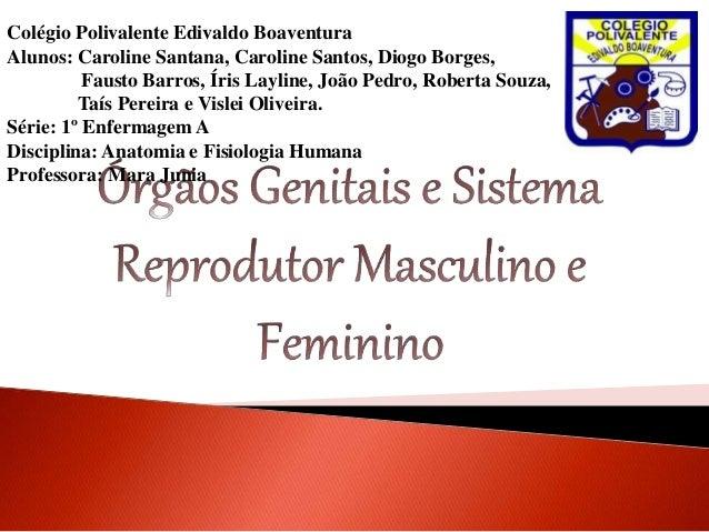 Colégio Polivalente Edivaldo Boaventura Alunos: Caroline Santana, Caroline Santos, Diogo Borges, Fausto Barros, Íris Layli...