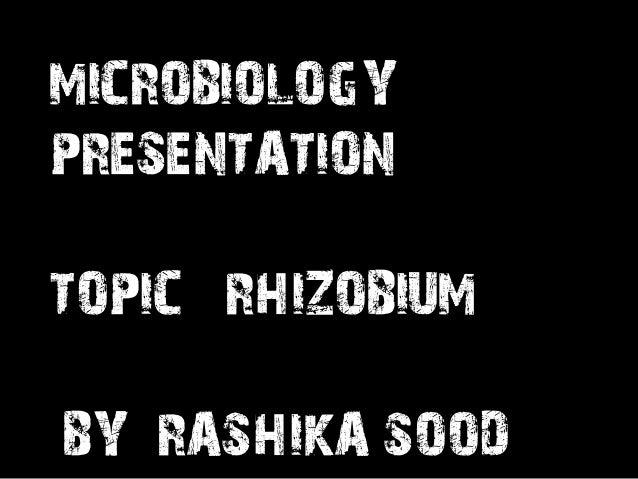 Rhizobium Microbiology Science Learning Educative Presentation