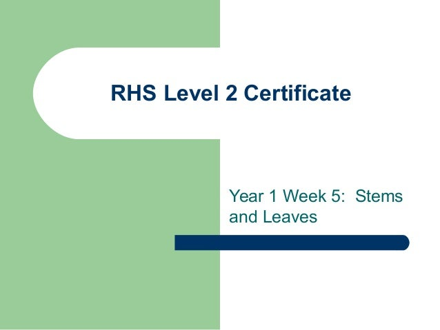 RHS Level 2 Certificate Year 1 Week 5: Stems and Leaves