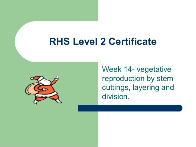 RHS Level 2 Certificate Week 14- vegetative reproduction by stem cuttings, layering and division.