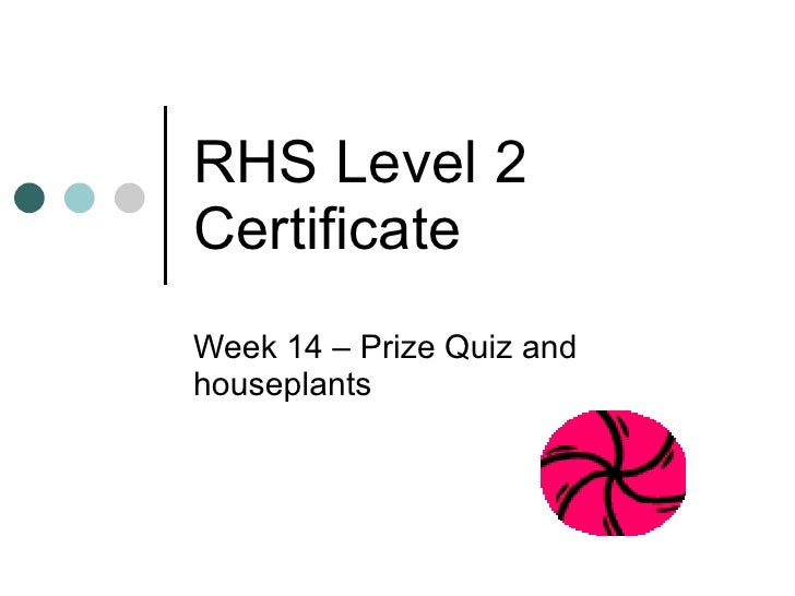 RHS Level 2 Certificate Week 14 – Prize Quiz and houseplants