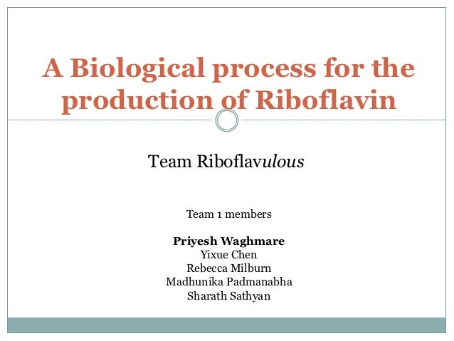 A Biological process for the production of Riboflavin       Team Riboflavulous            Team 1 members          Priyesh ...