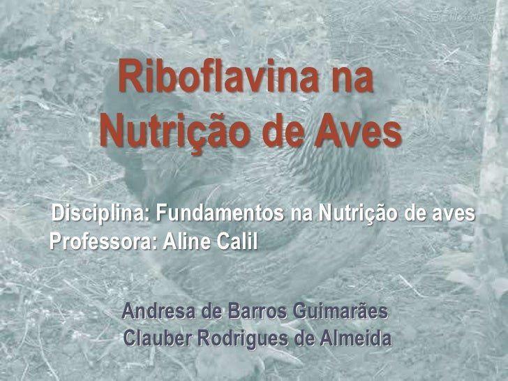 Riboflavina na    Nutrição de AvesDisciplina: Fundamentos na Nutrição de avesProfessora: Aline Calil       Andresa de Barr...