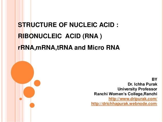 STRUCTURE OF NUCLEIC ACID :RIBONUCLEIC ACID (RNA )rRNA,mRNA,tRNA and Micro RNABYDr. Ichha PurakUniversity ProfessorRanchi ...
