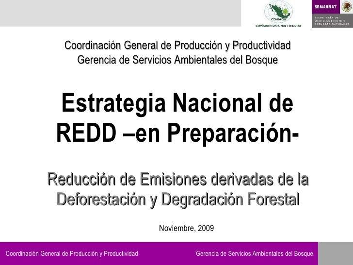 Estrategia Nacional de REDD –en Preparación- Reducción de Emisiones derivadas de la Deforestación y Degradación Forestal C...