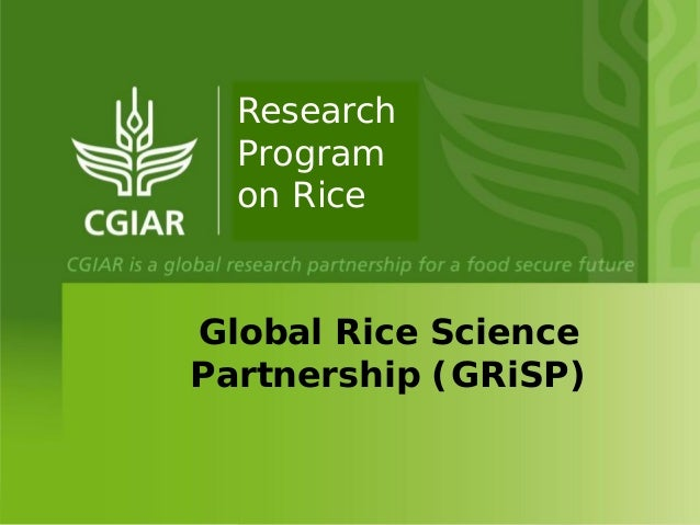 Global Rice Science Partnership (GRiSP) Research Program on Rice