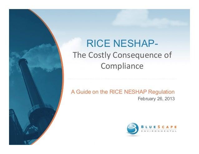 BlueScape RICE NESHAP Webinar 2-26-13