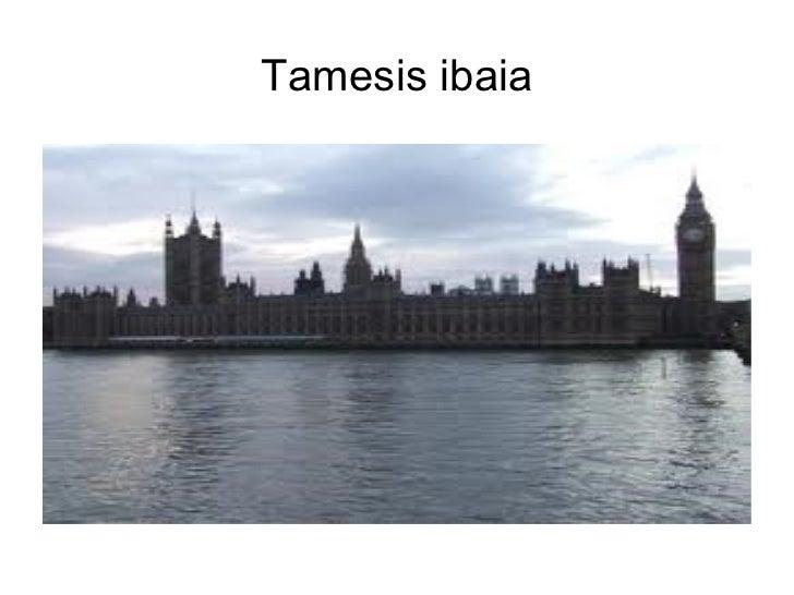 Tamesis ibaia