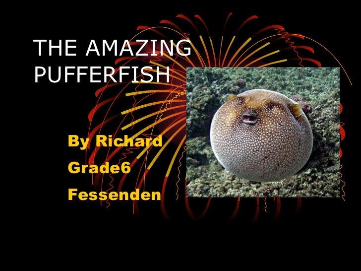 THE AMAZING PUFFERFISH By Richard Grade6 Fessenden