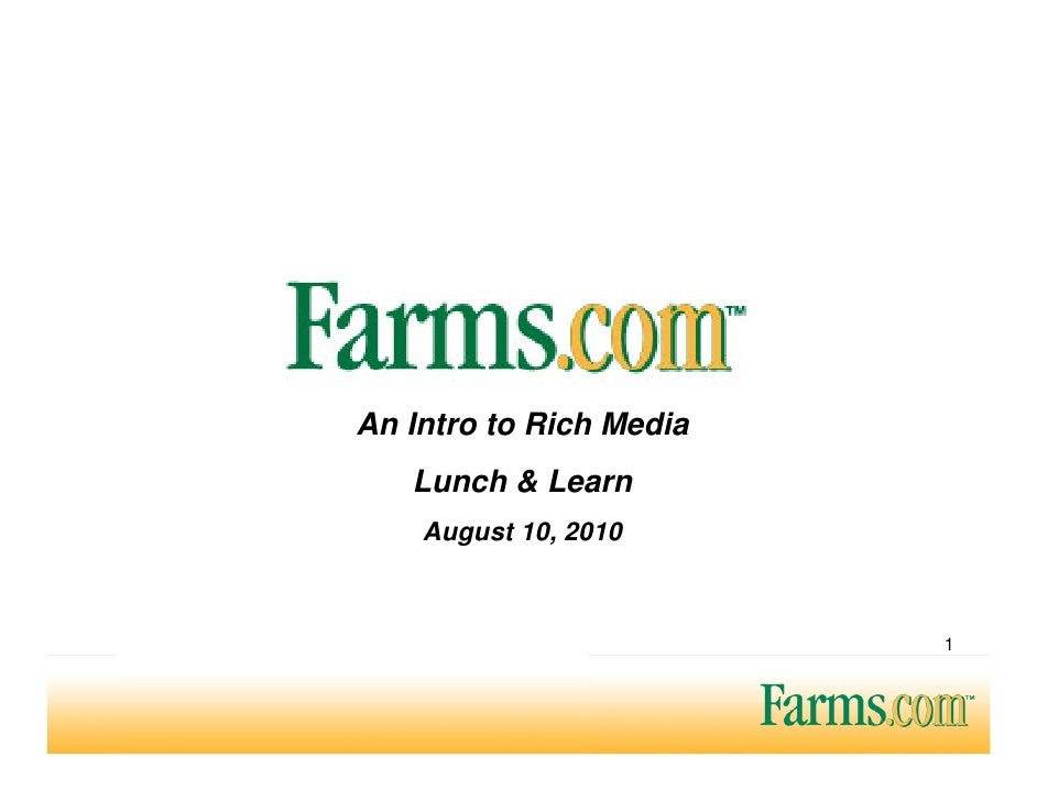 An Intro to Rich Media    Lunch & Learn     August 10, 2010                             1