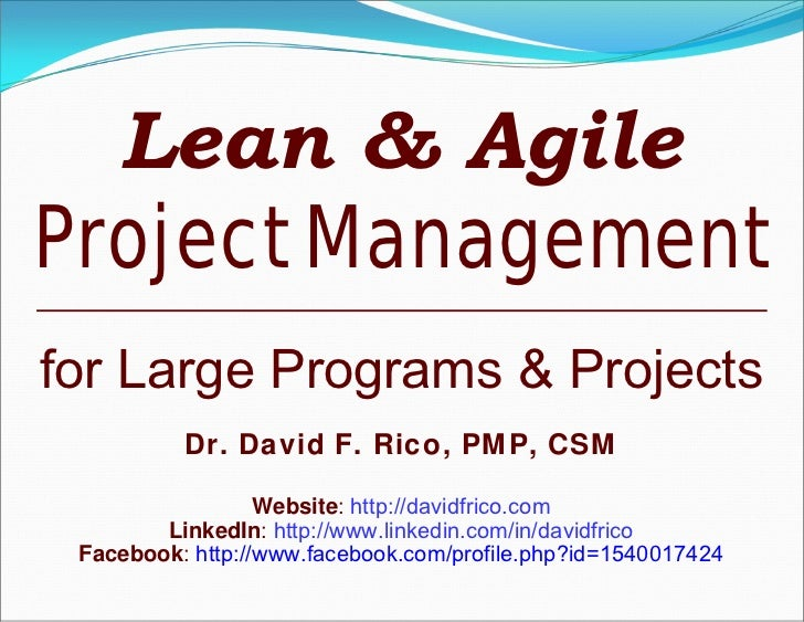 Lean & Agile Project Management: For Large Programs & Projects