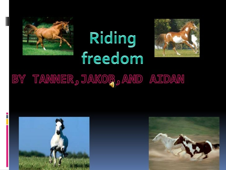 FIND OUT IN RIDING FREEDOM