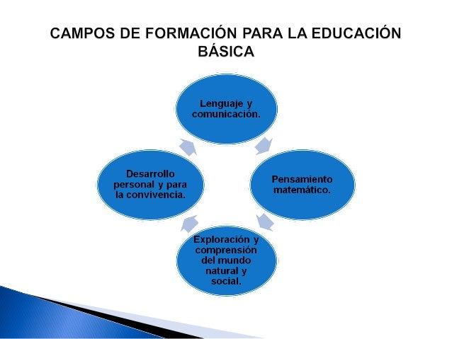 La finalidad es el desarrollo de competencias para la vida, lo cual significa que la escuela y los docentes, a través de s...