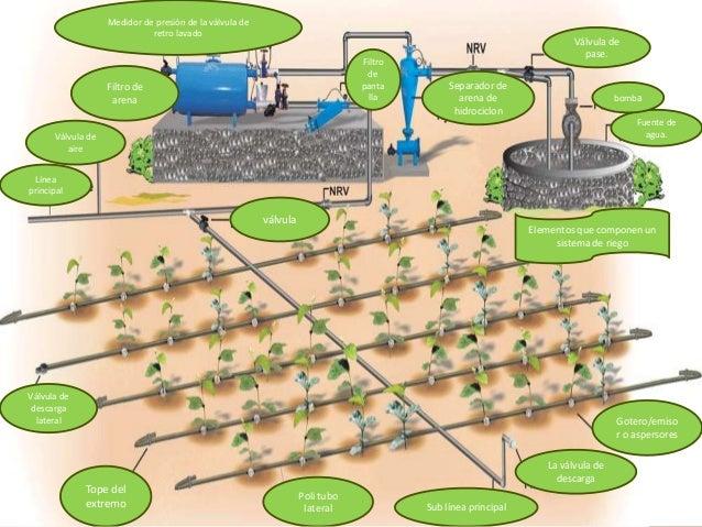 Operacion y manteimiento de los sistemas de riego aspersion for Aspersores para riego de jardin