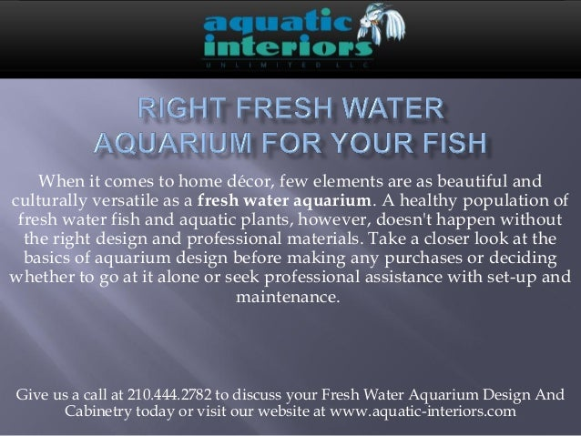 For Your Fish Choose The Right Fresh Water Aquarium