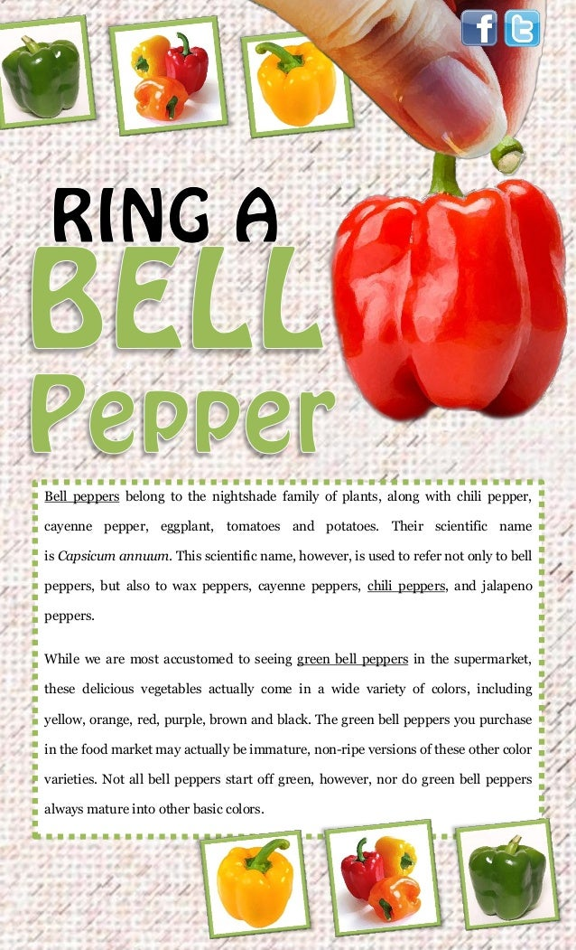 Bell peppers belong to the nightshade family of plants, along with chili pepper,cayenne pepper, eggplant, tomatoes and pot...