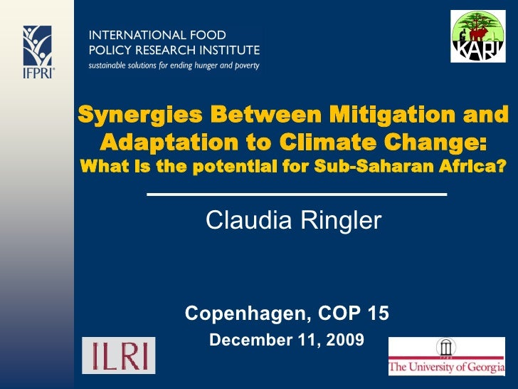 Synergies Between Mitigation and  Adaptation to Climate Change: What is the potential for Sub-Saharan Africa?             ...