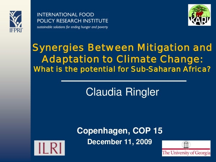 Synergies Between Mitigation and Adaptation to Climate Change: What is the potential for Sub-Saharan Africa?