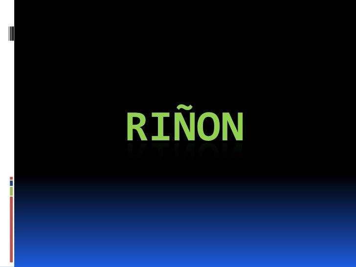 RIÑON<br />