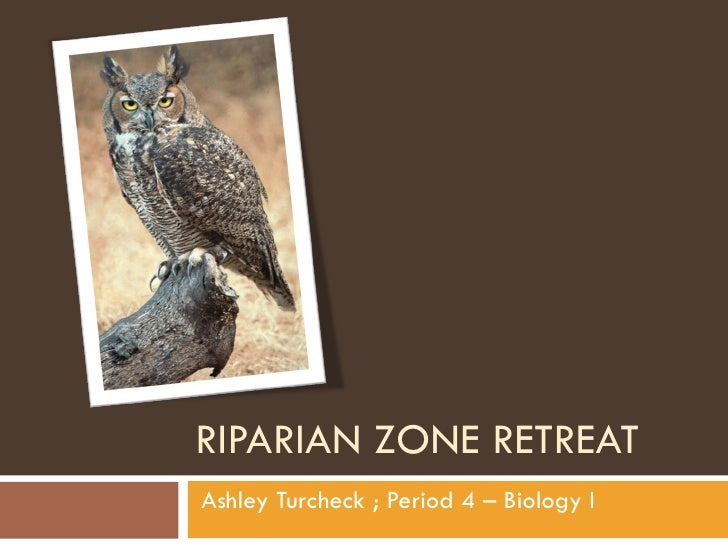 RIPARIAN ZONE RETREAT Ashley Turcheck ; Period 4 – Biology I
